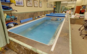 Oasis Physical Therapy and Aquatics Endless Pool